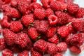 Fresh and sweet raspberries background - PhotoDune Item for Sale
