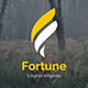 Fortune Premium Pitch Deck Powerpoint Template - GraphicRiver Item for Sale