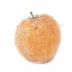 rotten apple isolated - PhotoDune Item for Sale
