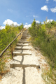 sand path up hill between trees and blue sky - PhotoDune Item for Sale