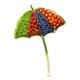 Vegetable umbrella. - PhotoDune Item for Sale