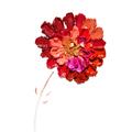 Cosmetic flower. - PhotoDune Item for Sale