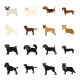 Dog Breeds Black,cartoon Icons in Set Collection - GraphicRiver Item for Sale