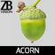 Acorn 001 - 3DOcean Item for Sale