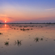Danube Delta, Romania - PhotoDune Item for Sale