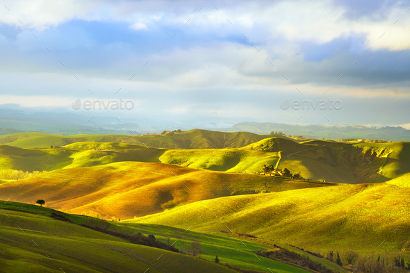 Tuscany, rural sunset landscape. Countryside and trees. - Stock Photo - Images