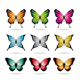 Various Colorful Butterflies - GraphicRiver Item for Sale