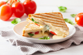 grilled cheese and tomato sandwich on white background - PhotoDune Item for Sale
