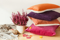 colorful cushions throw cozy home autumn mood flower - PhotoDune Item for Sale