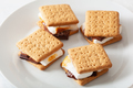homemade marshmallow s'mores with chocolate on crackers - PhotoDune Item for Sale