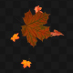 Maple Leaf 01 - VideoHive Item for Sale