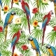 Tropical Seamless Pattern with Parrots