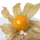 Puff cake with walnuts and physalis. - PhotoDune Item for Sale
