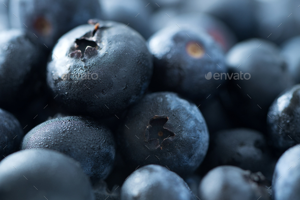 Fresh blueberries background with mist - Stock Photo - Images