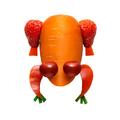 Vegetable frog. - PhotoDune Item for Sale