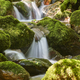 Water stream with mossy rocks in Muniellos Biosphere Reserve. Asturias - PhotoDune Item for Sale