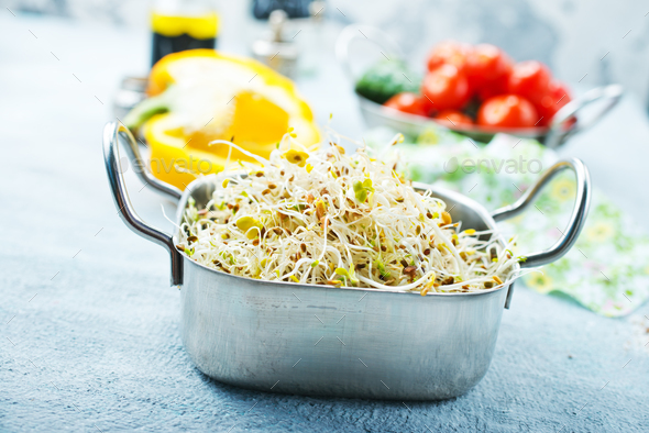 Raw sprouts - Stock Photo - Images