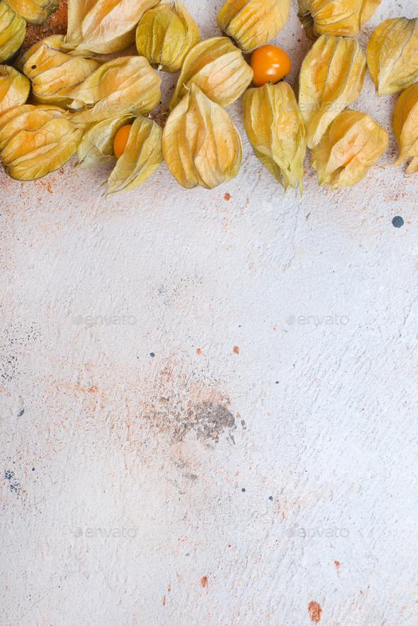 Physalis fruit - Stock Photo - Images
