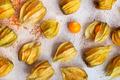 Physalis fruit - PhotoDune Item for Sale
