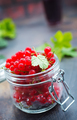 red currant - PhotoDune Item for Sale