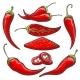 Pepper Harvest Sketch - GraphicRiver Item for Sale