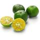 citrus depressa, taiwan tangerine,hirami lemon, thin skinned flat lemon - PhotoDune Item for Sale