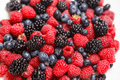 Berry texture close up. Top view flat lay. - PhotoDune Item for Sale