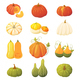 Colorful Pumpkin Set - GraphicRiver Item for Sale