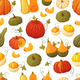 Colorful Pumpkin Pattern - GraphicRiver Item for Sale