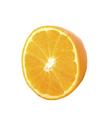 Half of a orange fruit isolated on white background - PhotoDune Item for Sale