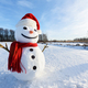 Funny snowman in red hat - PhotoDune Item for Sale