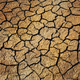 Background of a very dried ground in Summer - PhotoDune Item for Sale