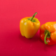 Sweet bellpepper on a colored background. Studio light. Top view - PhotoDune Item for Sale