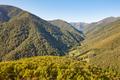 Oak tree forest landscape in Asturias. Muniellos viewpoint. Spain - PhotoDune Item for Sale