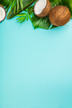 Coconuts and tropical leaves - PhotoDune Item for Sale