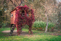 A house on a tree - PhotoDune Item for Sale