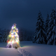 Christmas tree with lights - PhotoDune Item for Sale