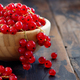 Ripe red currant berries - PhotoDune Item for Sale