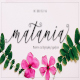 Matania script - GraphicRiver Item for Sale