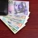 Slovak Koruna in the black wallet  - PhotoDune Item for Sale