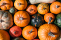 Different kind of pumpkins closeup - PhotoDune Item for Sale