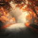 Mystical autumn red forest with road in fog - PhotoDune Item for Sale