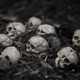 Heap of human skulls on ground - PhotoDune Item for Sale