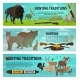 Hunting Animals - GraphicRiver Item for Sale