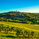 San Gimignano panoramic medieval town towers skyline and vineyar - PhotoDune Item for Sale