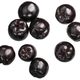 Chokeberry aronia melanocarpa, top, paths - PhotoDune Item for Sale