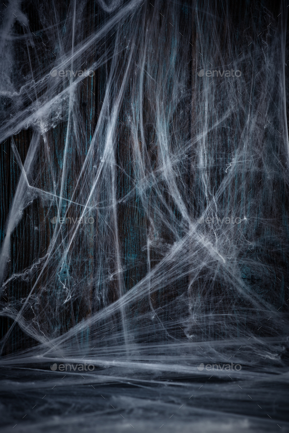 Halloween wooden background with spider net - Stock Photo - Images