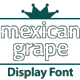 Mexican Grape Display Font - GraphicRiver Item for Sale