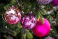 Colorful Christmas decorations on xmas tree - PhotoDune Item for Sale