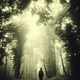 Surreal dark forest. Gloomy landscape with man walking on forest - PhotoDune Item for Sale